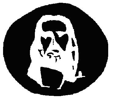 Ilusión óptica Jesús