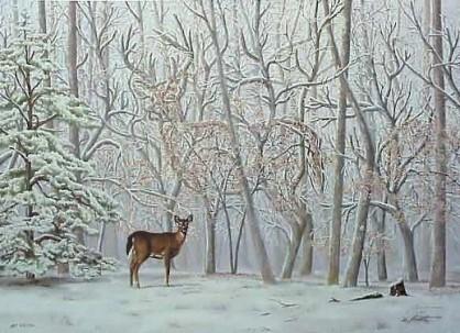 Ilusión optica de ciervos ocultos